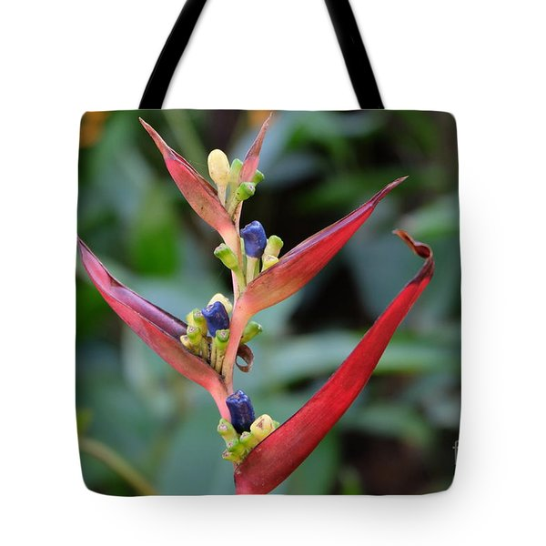 Nature's Creation Tote Bag