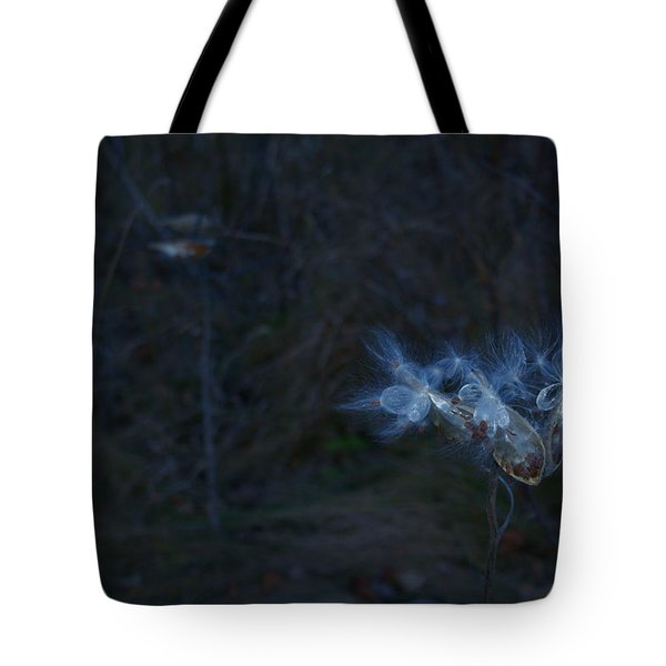 Natures Fairies Tote Bag