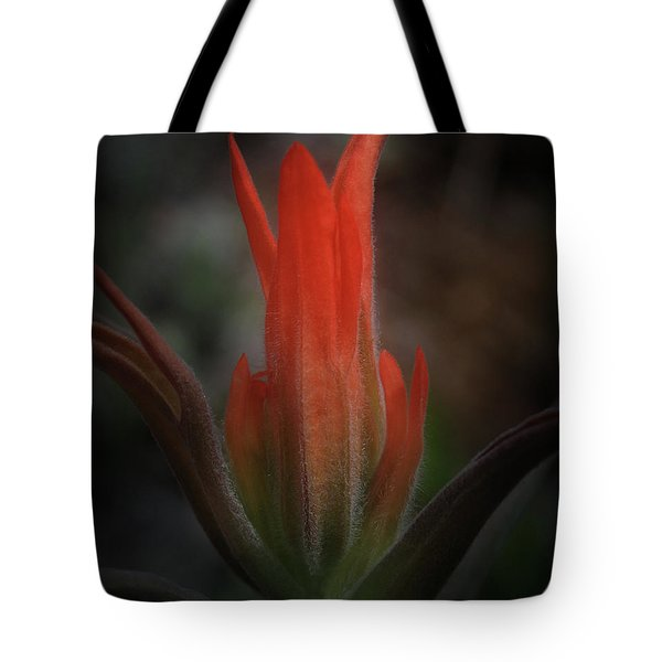 Nature's Fire Tote Bag