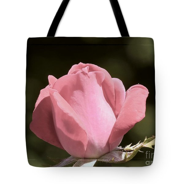 Tote Bag featuring the photograph Nature's Gems by Brenda Bostic