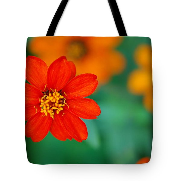 Tote Bag featuring the photograph Nature's Glow by Debbie Karnes