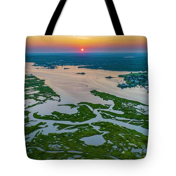 Natures Hidden Lines Tote Bag