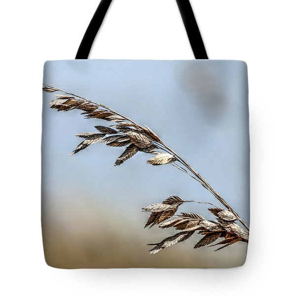 Nature's Hummingbird Tote Bag