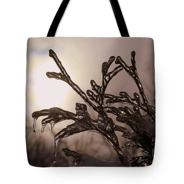 Natures  Ice Sculpture Tote Bag