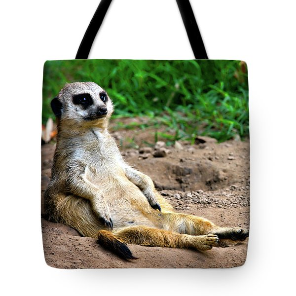 Natures Lazy Boy Tote Bag by Lana Trussell