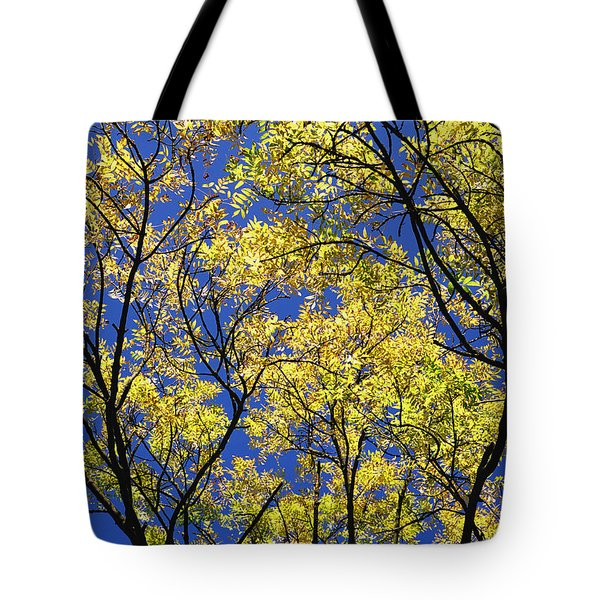 Tote Bag featuring the photograph Natures Magic - Original by Rebecca Harman