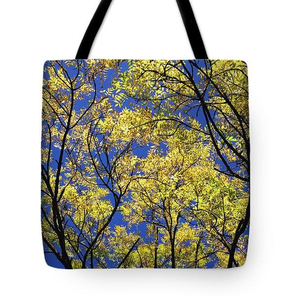 Natures Magic - Original Tote Bag