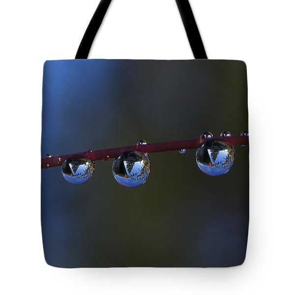 Nature's Orbs Tote Bag