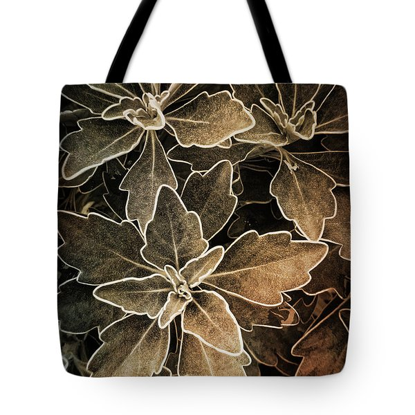 Natures Patterns Tote Bag