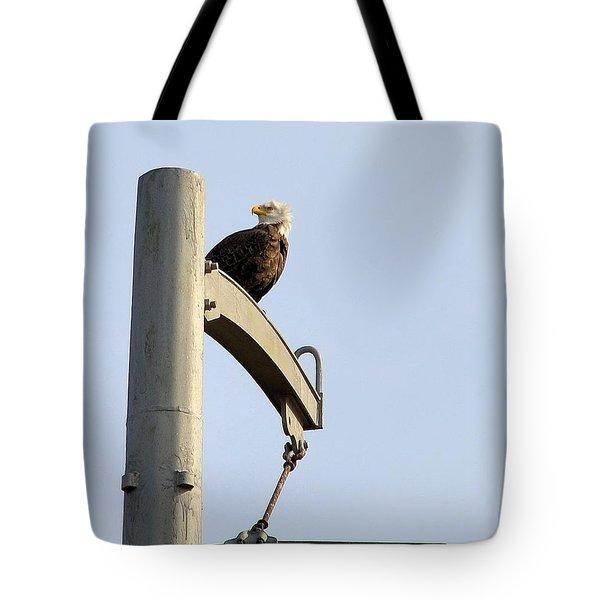 Nature's Philadelphia Eagle Tote Bag