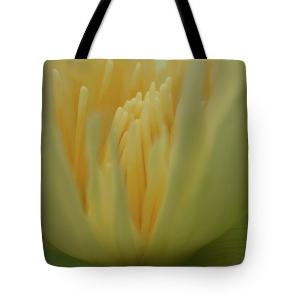 Natures Reflection Tote Bag