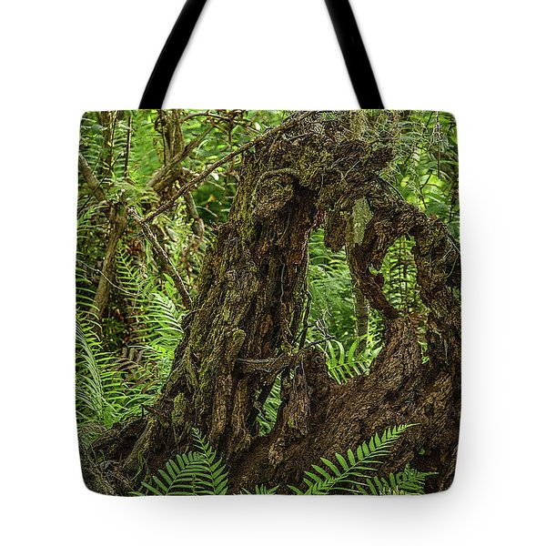 Nature's Sculpture Tote Bag
