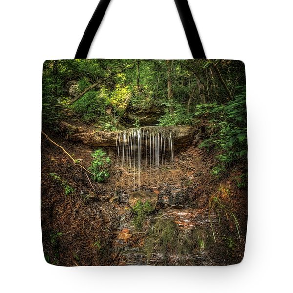 Natures Spring Tote Bag