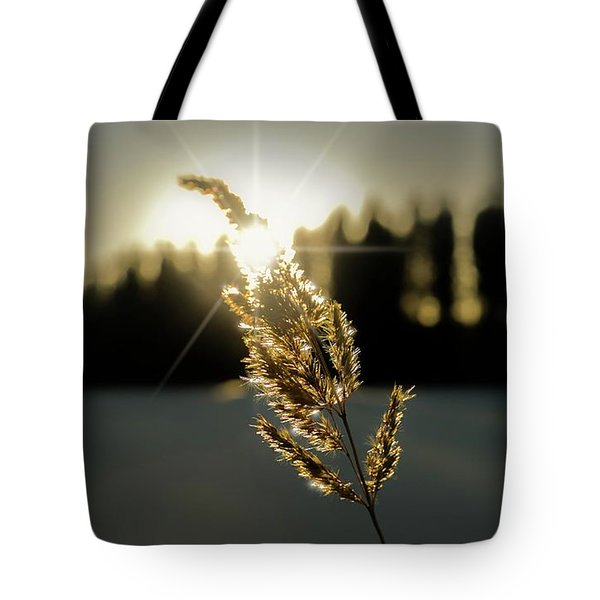 Nature's Stars Tote Bag by Rose-Marie Karlsen