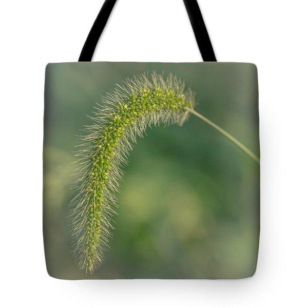 Natures  Tail Tote Bag