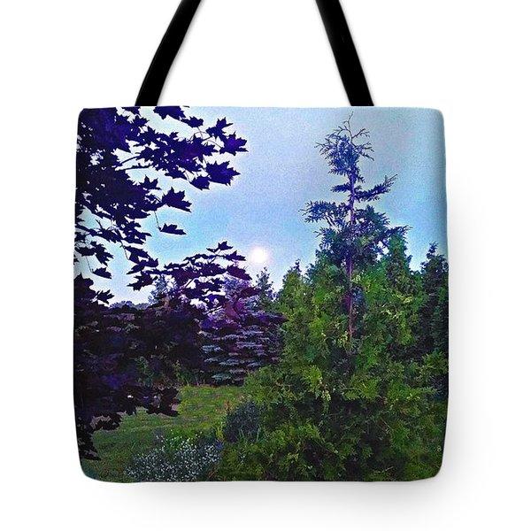 Nature's Textures Tote Bag by Diamante Lavendar