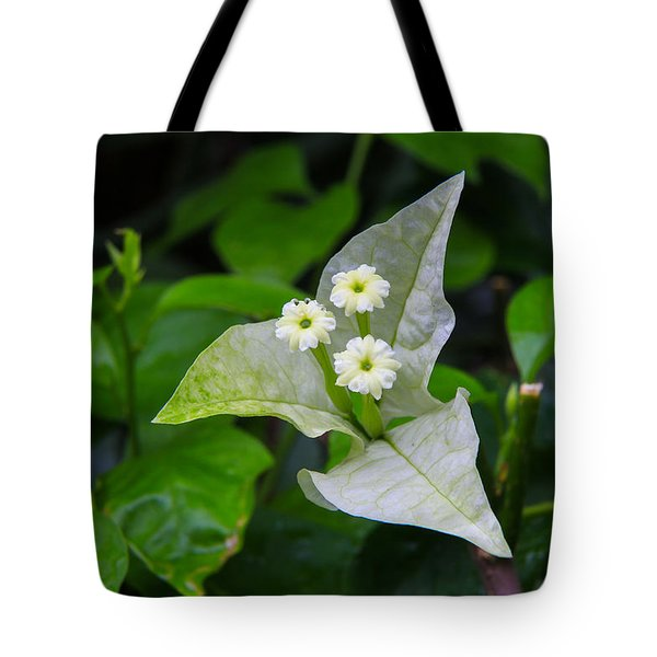 Nature's Triplets Tote Bag