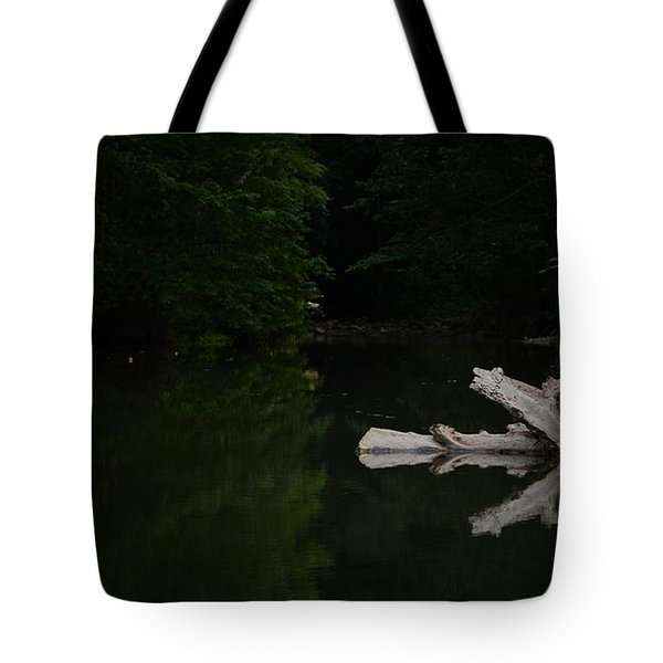 Natures Work Of Art Tote Bag by Pamela Blizzard
