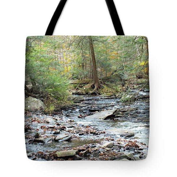 Nature's Finest 6 - Ricketts Glen Tote Bag