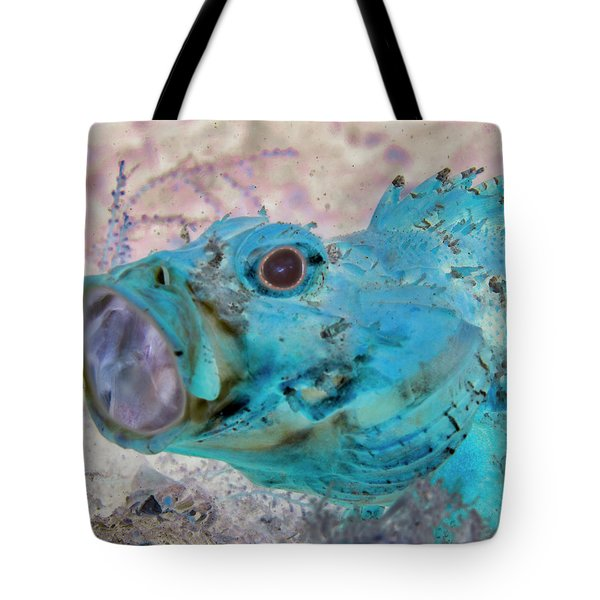 Tote Bag featuring the photograph Nautical Beach And Fish #1 by Debra and Dave Vanderlaan