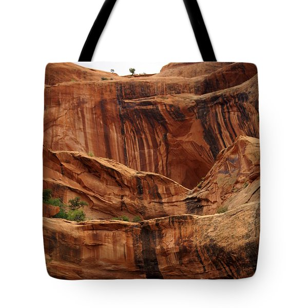 Near Moab 1 Tote Bag by Marty Koch