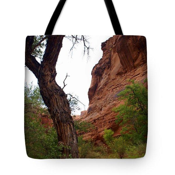 Near Moab 2 Tote Bag by Marty Koch