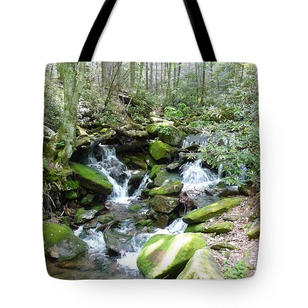 Near The Grotto Tote Bag by Joel Deutsch