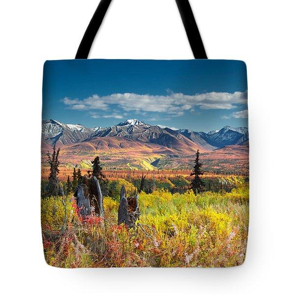 Nelchina Basin Tote Bag