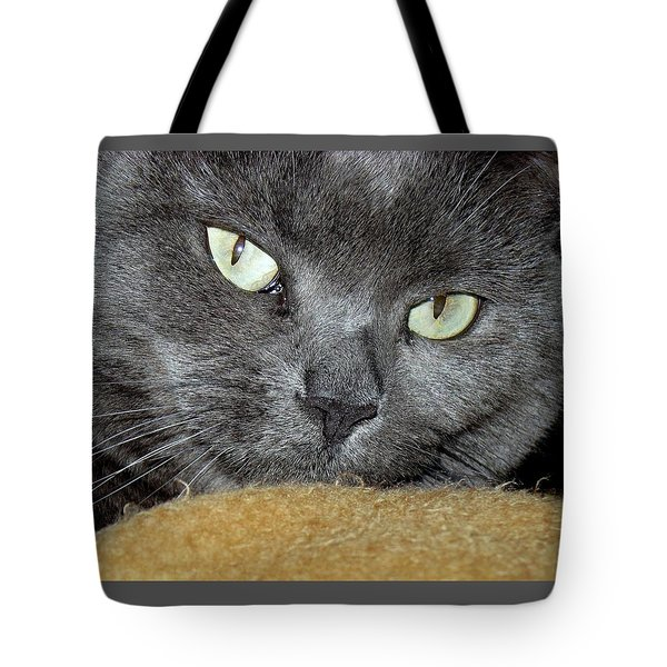 My Nellie-belle's Catitude Tote Bag