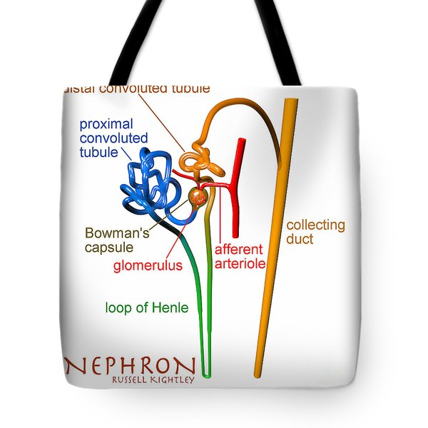 Tote Bag featuring the digital art Nephron Labels #1 by Russell Kightley