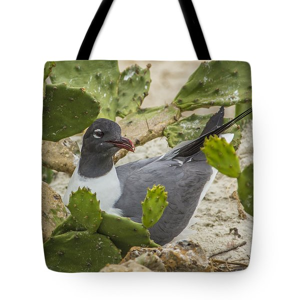 Tote Bag featuring the photograph Nesting Laughing Gull by Paula Porterfield-Izzo
