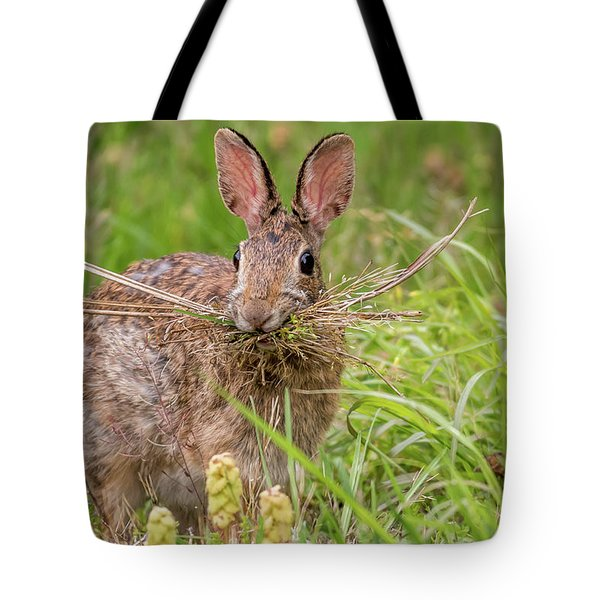 Nesting Rabbit Tote Bag by Terry DeLuco