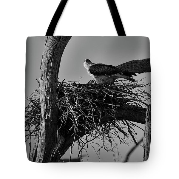 Tote Bag featuring the photograph Nesting V2 by Douglas Barnard
