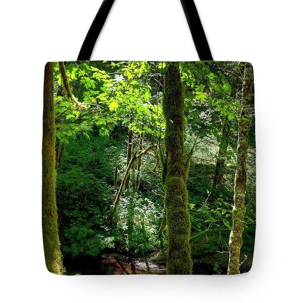 Nestucca River 3039 12x18 Tote Bag