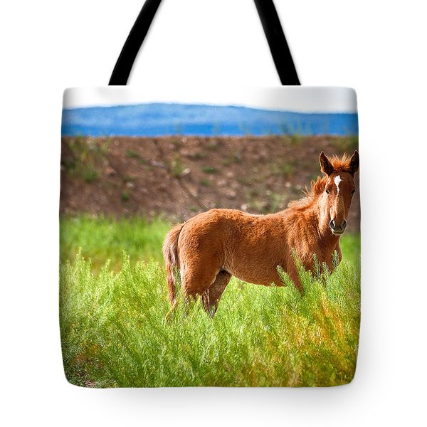 Tote Bag featuring the photograph Nevada Mustang Baby - Spring 2016 by Vinnie Oakes