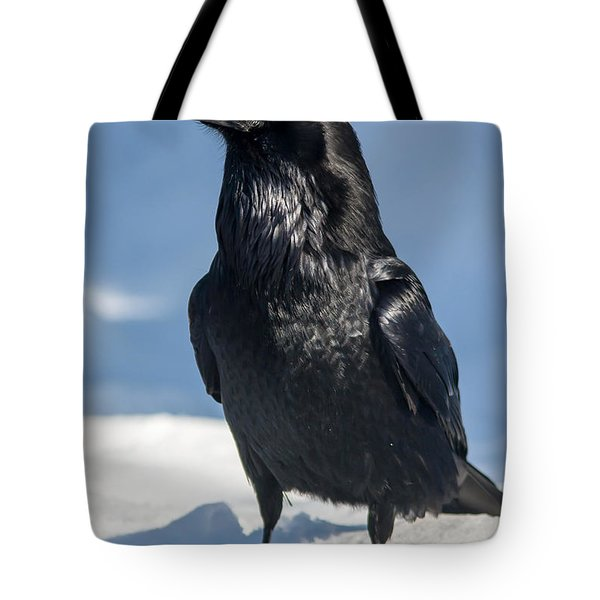 Nevermore Tote Bag by Jack Bell