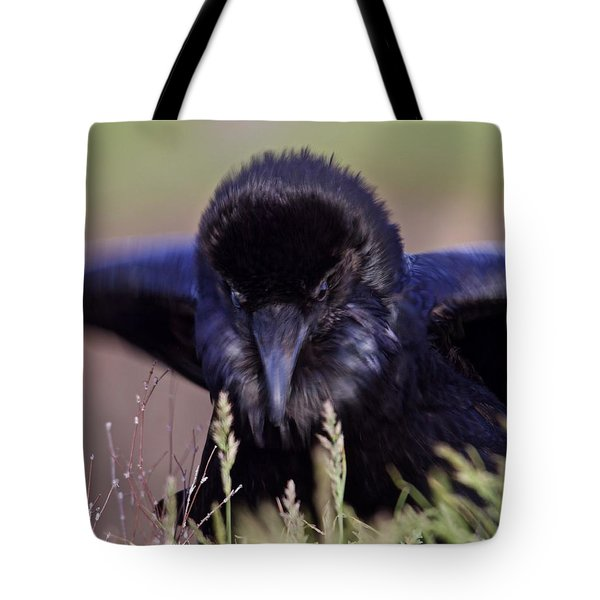 Nevermore Tote Bag by Todd Kreuter