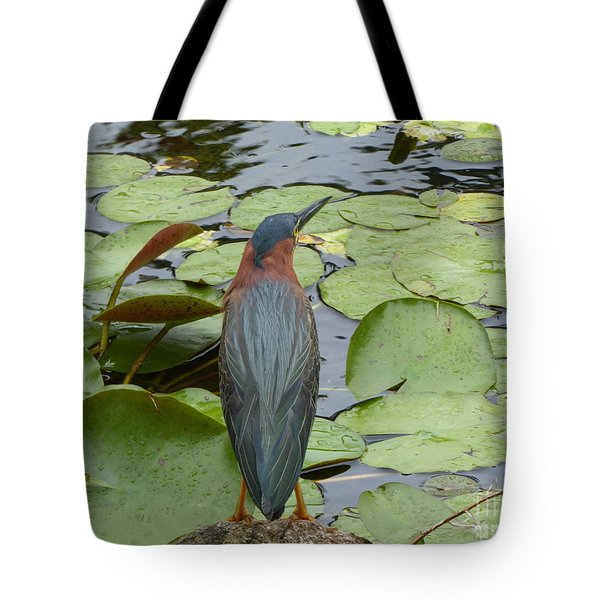 Nevis Bird Observes Tote Bag