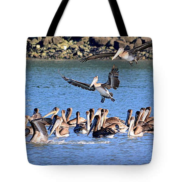 Tote Bag featuring the photograph New Arrivals by AJ Schibig