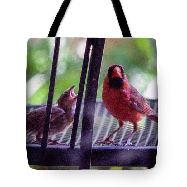 New Baby Cardinal Tote Bag