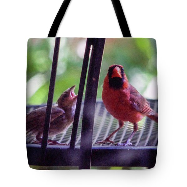New Baby Cardinal Tote Bag