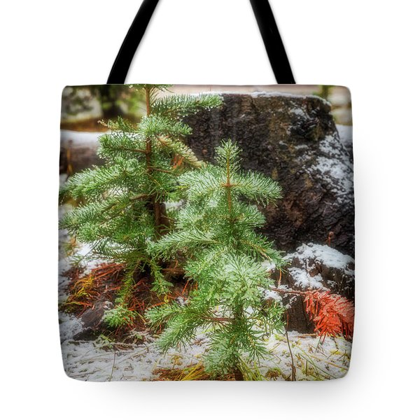 Tote Bag featuring the photograph New Beginnings by Cat Connor