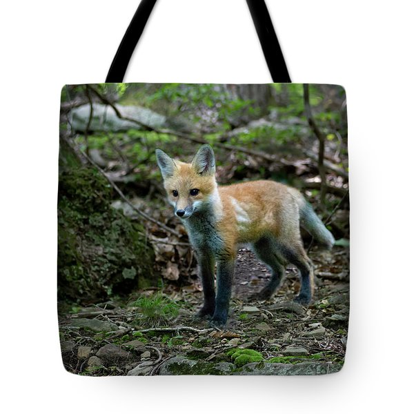 Tote Bag featuring the photograph New Big World by Dan Friend