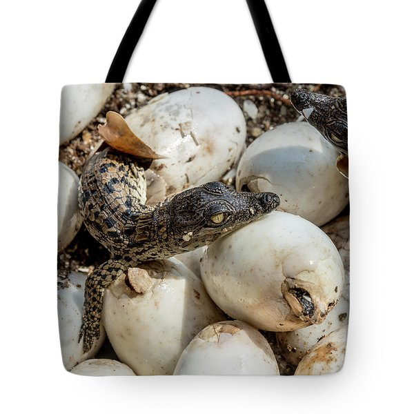 Welcome To The World Tote Bag