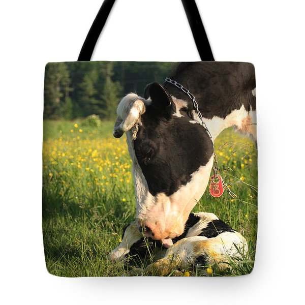 New Born Calf Tote Bag