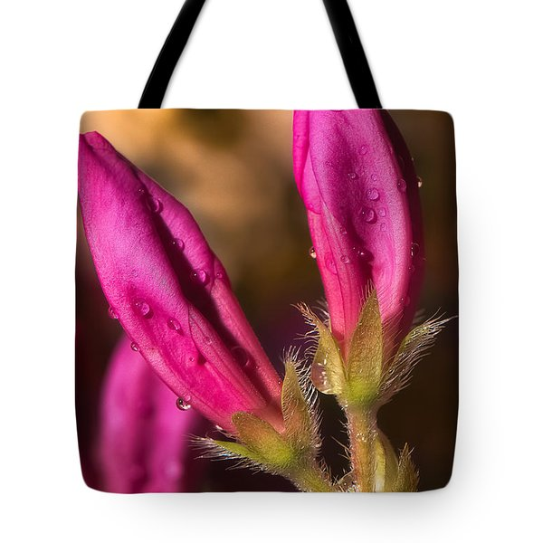 New  Tote Bag by Brian Wright