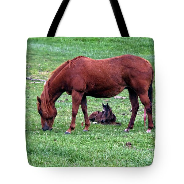 New Colt Tote Bag by Robert Bales