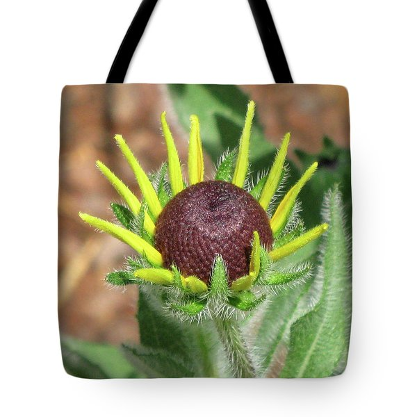 New Daisy Tote Bag by Michele Wilson