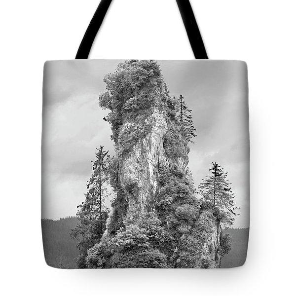 New Eddystone Rock Tote Bag