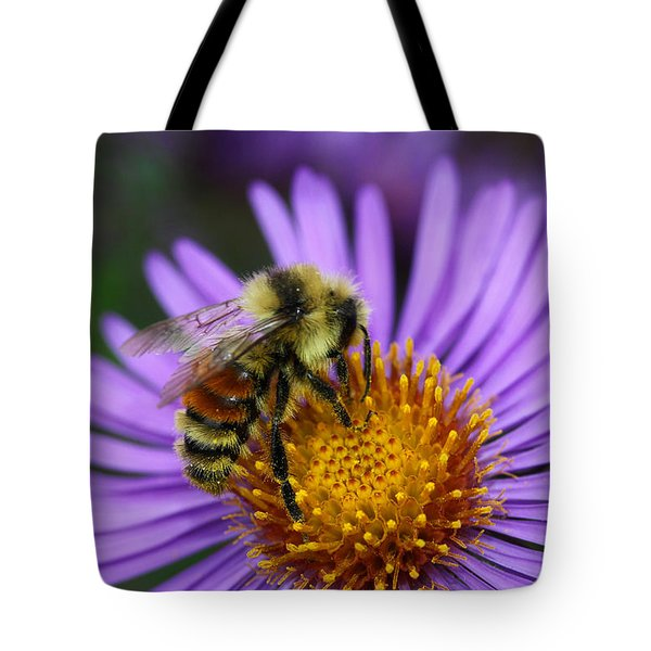 New England Aster And Bee Tote Bag